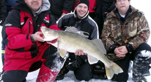 world record walleye - men holding a very large walleye