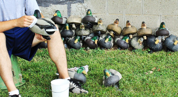 pre-hunt prep - cleaning-decoys-duck