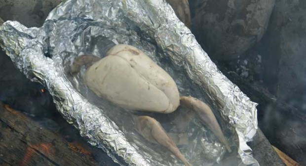 foolproof - a grouse in a foil pan