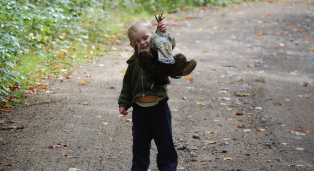 a toddler holding a harvested bird
