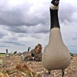 goose decoy in a field