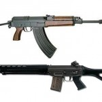 Swiss Arms Sig 550 and Cz 858