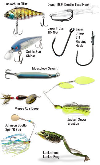 variety of lures