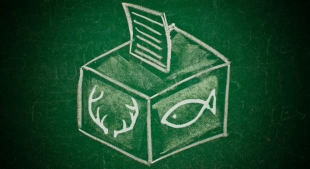 political power - ballot box
