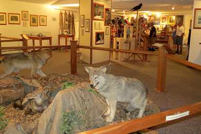 Wolf display