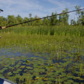 tackling heavy slop - man fishing in weedy water