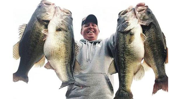 bass-lots-of-bass