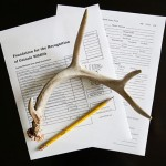 Antlers on paper