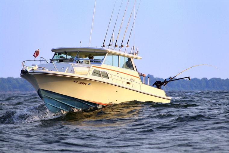 boating bill - boat