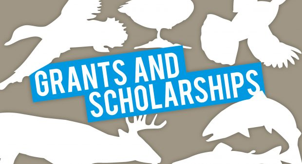 Fish and Wildlife Grants and Scholarships